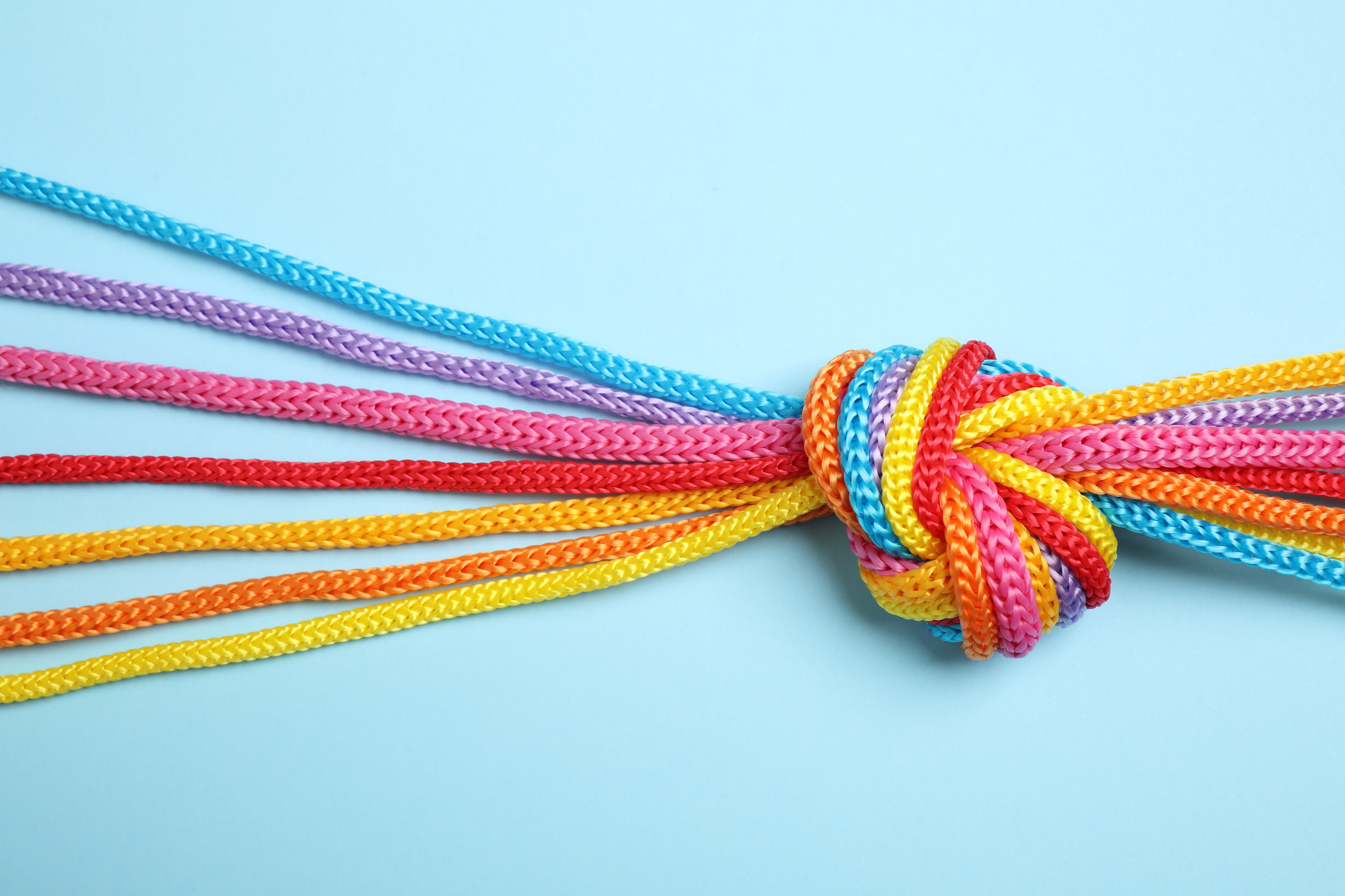 Colorful cords knotted together